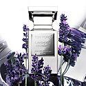 Lavender Extreme, ${color}
