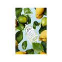 Under The Lemon Trees, ${color}
