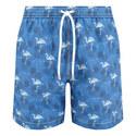 Flamingo Swim Shorts, ${color}