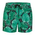 La Garden Swim Shorts, ${color}
