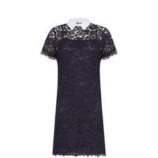 Collar Detail Lace Dress