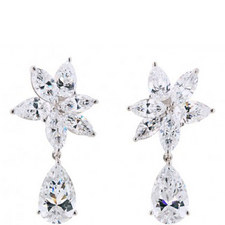 Fabulous Crystal Drop Earrings