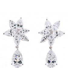 Fabulous Crystal Drop Earrings