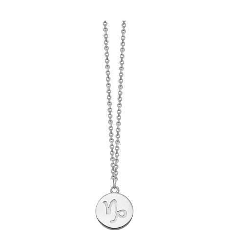 Capricorn Zodiac Pendant, ${color}