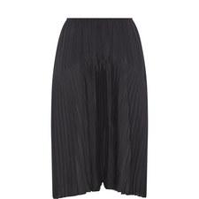 Pleated Seamed Skirt