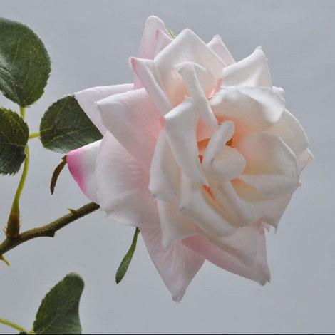 Rose Stem 45cm, ${color}