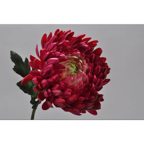 Chrysanthemum Spray, ${color}