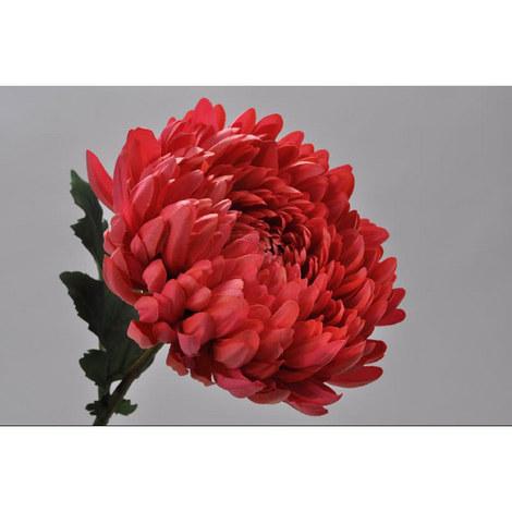Chrysanthemum Spray, ${color}