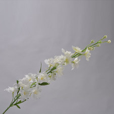 Delphinium Spray 79cm