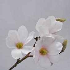 Magnolia Spray 49cm