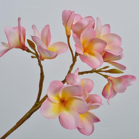 Plumeria Spray 69cm, ${color}