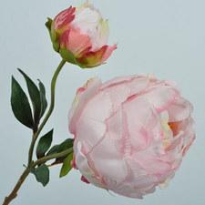Peony Bloom 56cm