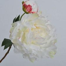 Peony Bloom 54cm