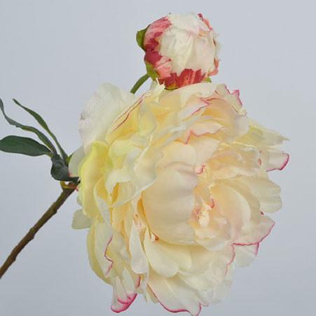 Peony Bloom 54cm, ${color}