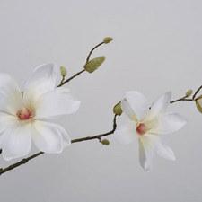 Magnolia Spray 82cm