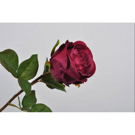 Rose Stem, ${color}