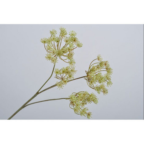 Queen Ann Lace Spray, ${color}