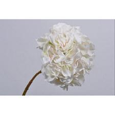 Hydrangea Stem 53cm