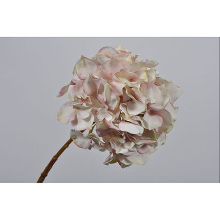 Hydrangea Stem 53cm, ${color}