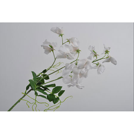 Lathyrus Spray 69cm, ${color}