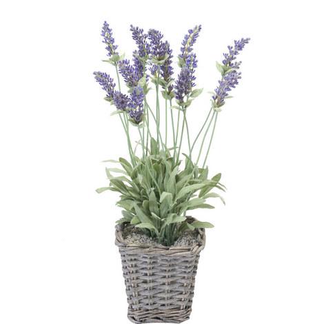 Lavender Basket 45cm, ${color}