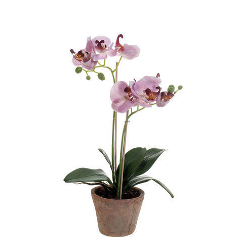 Phalaenopsis Artificial Plant 42cm, ${color}