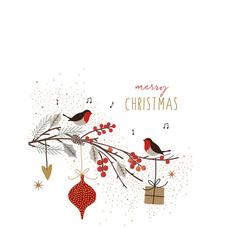 Robins on a Branch Card, ${color}