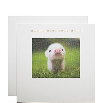 Piglet Happy Birthday Babe Card