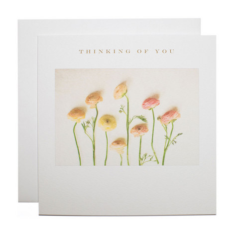 Ranunculus Sympathy Card, ${color}