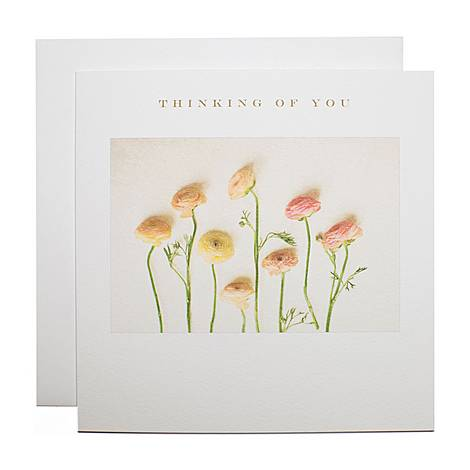 Ranunculus Sympathy Card, ${color}
