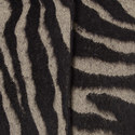 Dona Zebra Stripe Coat, ${color}