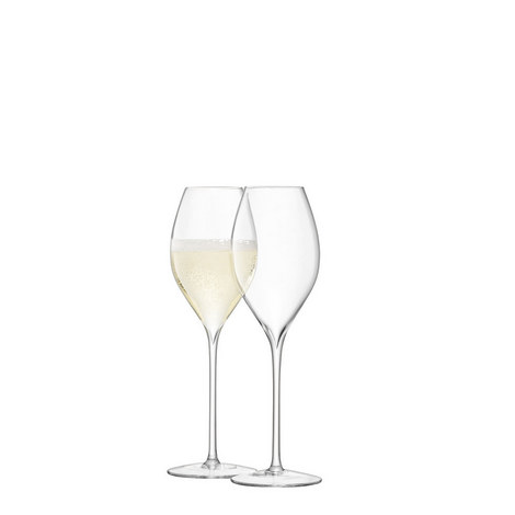 Set of 2 Champagne Tulip Glasses, ${color}