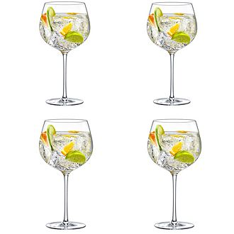 Perfect Gin Set of 4 Glasses