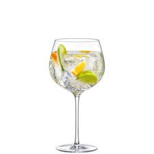 Perfect Gin Glass