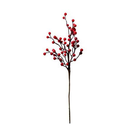 Berry Decoration, ${color}