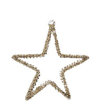 Spun Glass Star Tree Decoration