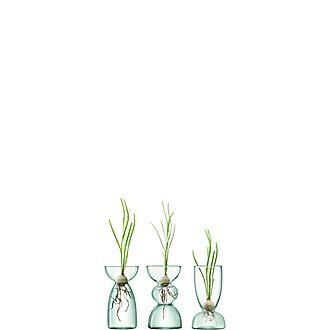 Trio Glass Canopy Vase Set