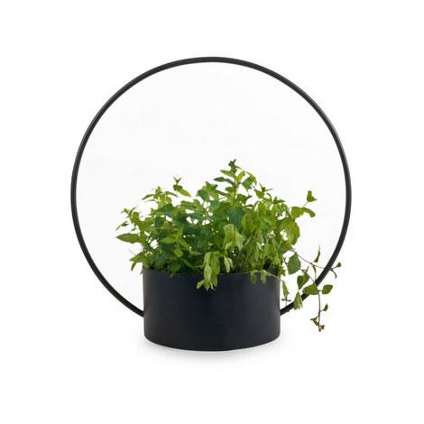 O Collection Pot, ${color}