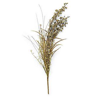 Blackened Buck Grass