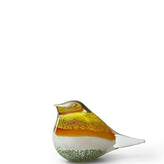 Bird Atlas Glass