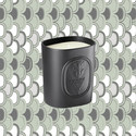 34 Boulevard Saint Germaine Scented Candle 220g, ${color}