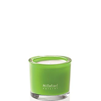 Green Fig & Iris Scented Candle
