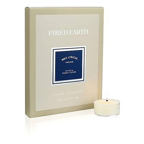 Set of Twelve Fired Earth Assam and Cedar Tea Lights, ${color}