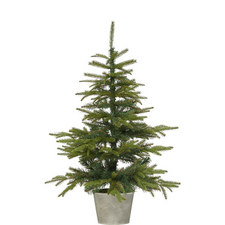 Potted Spruce Christmas Tree