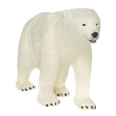 Polar Bear, ${color}
