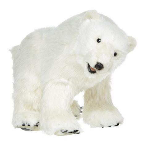 Polar Bear, ${color}