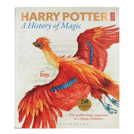 Harry Potter: A History of Magic , ${color}