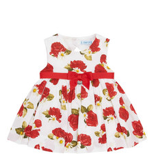 Rose & Daisy Print Dress