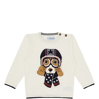 Racing Dog Sweater