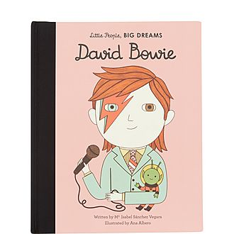 David Bowie Illustrated Book